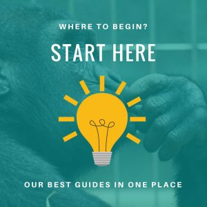 Start Here - Our Best Guides