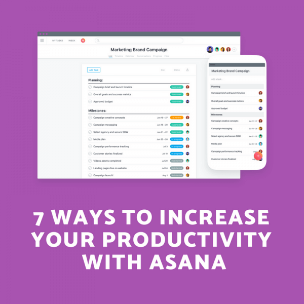 Work Productivity Asana